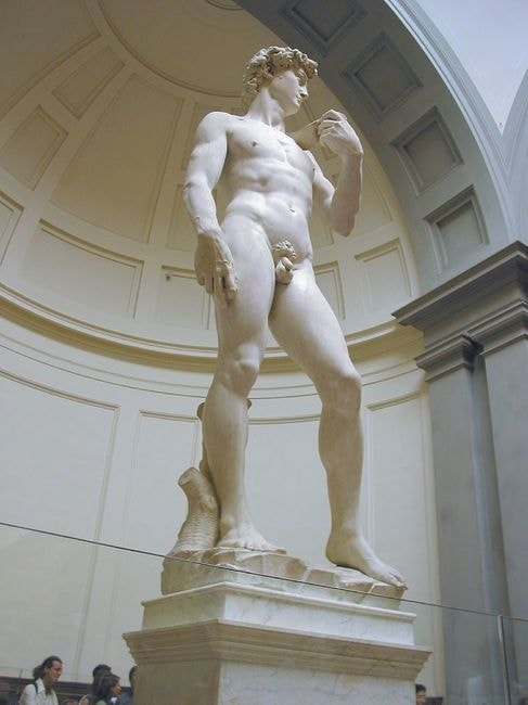 David_di_Michelangelo