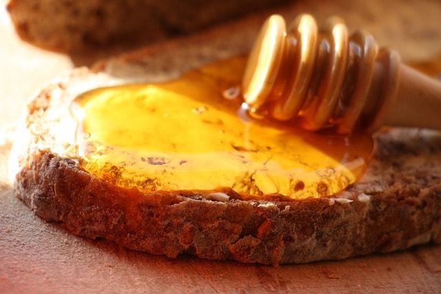 fir-tree-honey-752145_640