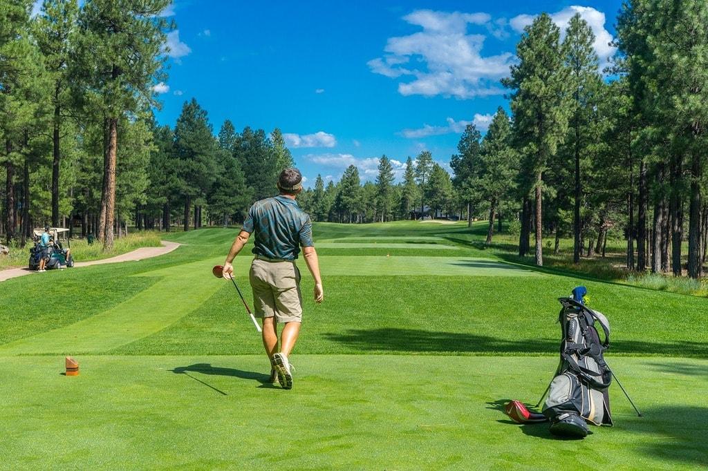 https://pixabay.com/en/golfer-golf-course-golfing-player-1960998/