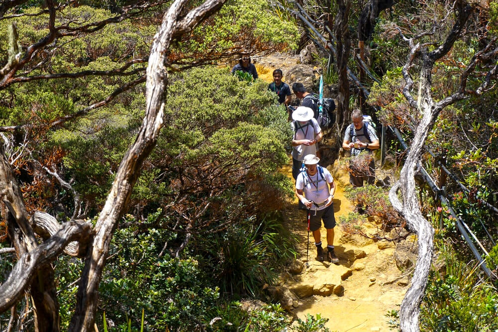 Hikers going up Mt Kinabalu