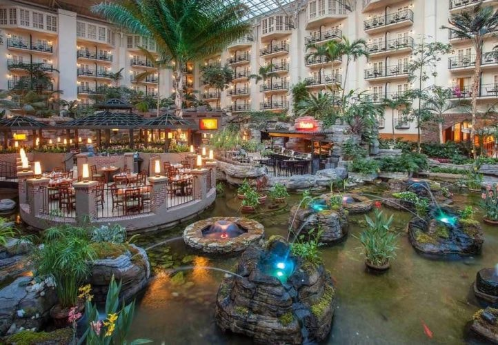 https://www.hotels.com/ho125186/?as-srs-report=HomePage%7CAutoS%7CHOTEL%7Cgaylord%20opryland%7C0%7C0%7C0%7C2%7C1%7C2%7C125186&tab=description&ZSX=0&SYE=3&q-room-0-children=0&q-room-0-adults=2