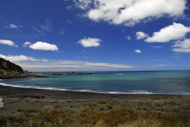 Island Bay Serenity