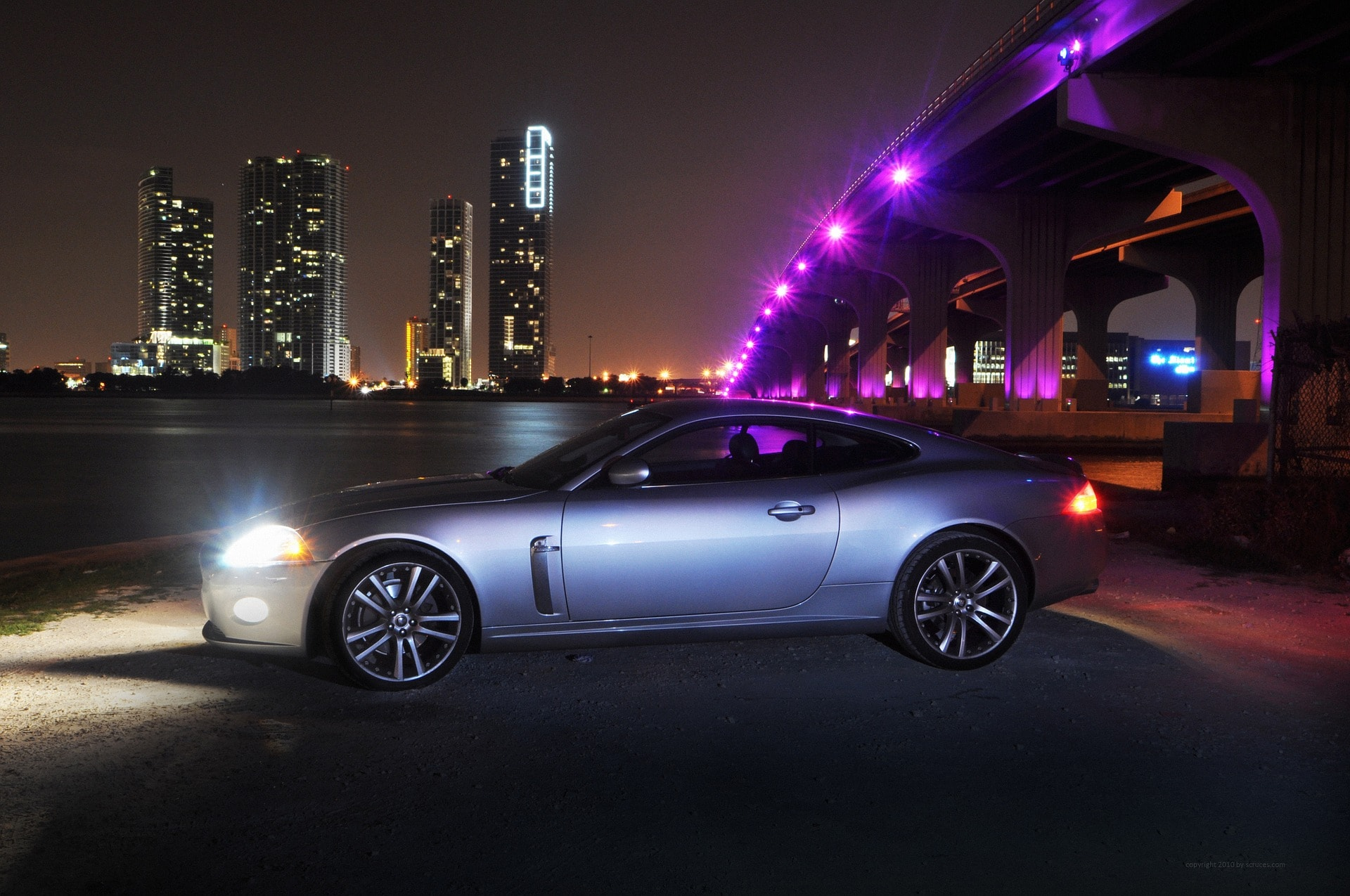 jaguar-1098056_1920
