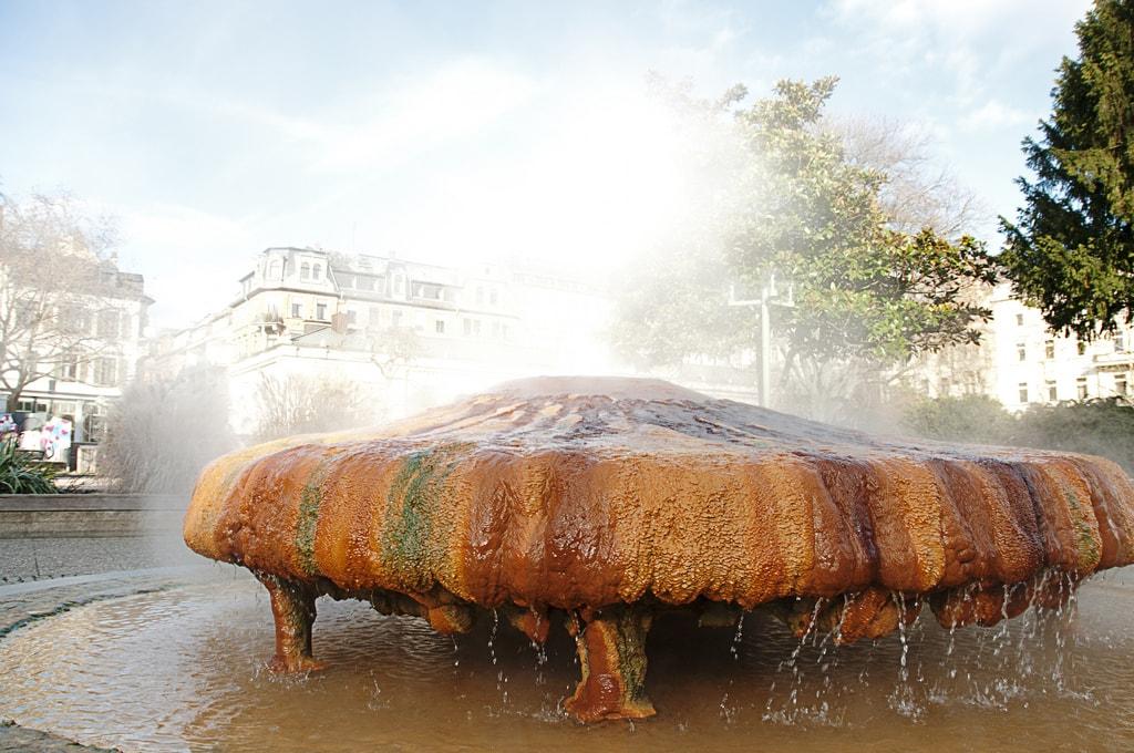 Kochbrunnen Lieven Van Melckebeke