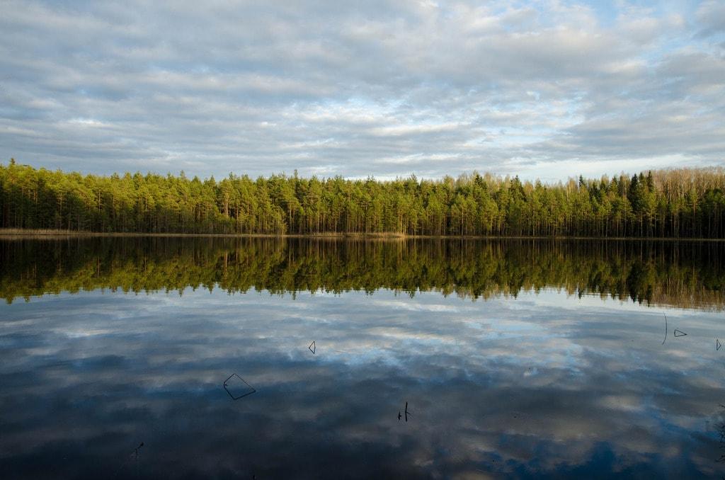 "Lake in the forest, Vitebsk region, Belarus | <a href=""https://www.flickr.com/photos/152080565@N04/34476902371/in/photolist-UwB8Ve-mGvgov-WTQWMU-UNbbJZ-ZYxeq5-211Ln8W-i3QNmt-ptZKxu-UHWCZ5-r7UxhX-9QwBmT-Z5oTZd-c6VxzS-Wj6m2P-23F7jek-X4eyED-RS8nyL-Yj94Nv-VXqXeW-pUG7Wc-nZmUVg-igNBbg-pu7hdV-pu7KRQ-VKJppV-eiMCTM-ohtW3X-ckon7E-c889zQ-GL2mzh-rmpWzL-9ceD2v-35mLWH-rheBvE-W8tpSL-8keZKo-cbbCo-cVQzMG-SPWnuX-TPGNtJ-SqzUGd-WTHArW-ARapQs-YBBvgj-SMaHvm-8D9pUk-CmjRqh-cjLNwf-rmXk81-pLBHpN"" target=""_blank"" rel=""noopener"">© Alex K/Flickr</a>"