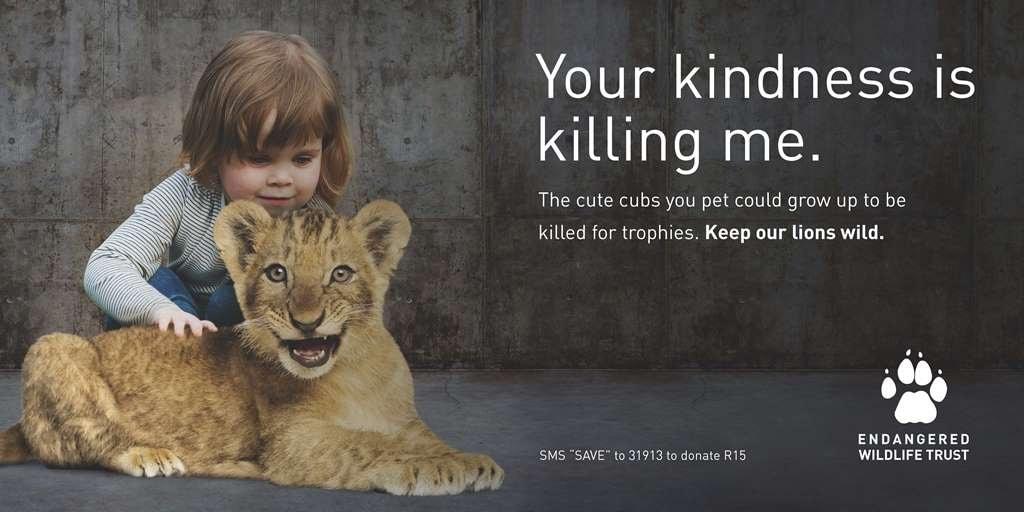 Lion Trade Billboard 2