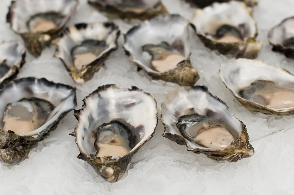 https://pixabay.com/en/oysters-shell-fish-seafood-shell-2220607/