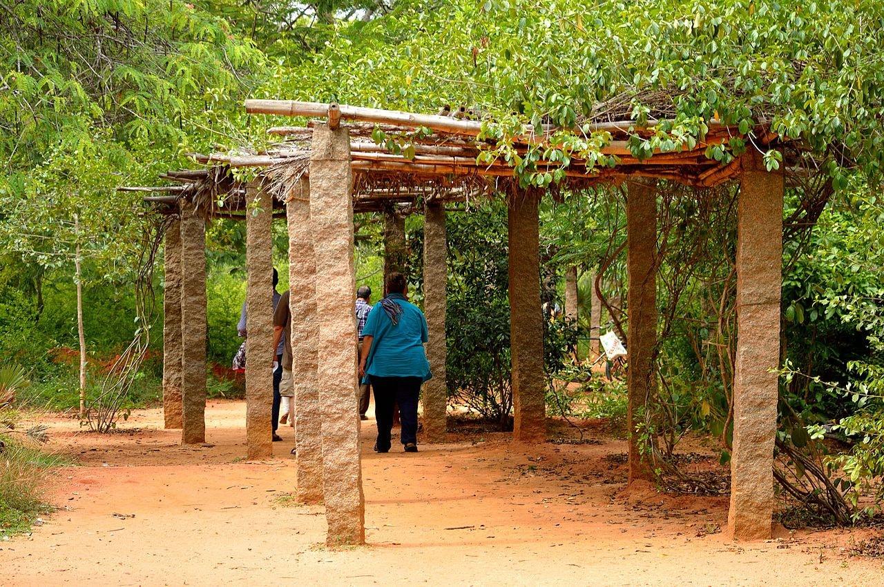 Pathway_of_Auroville_Botanical_Gardens