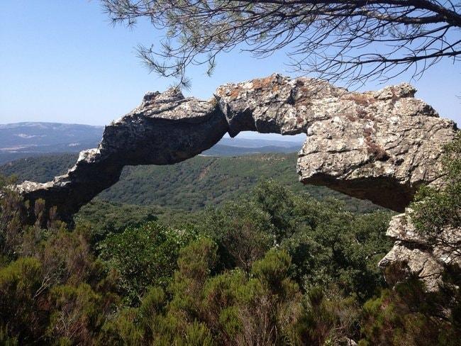 rsz_parque_natural_de_los_alcornocales_cádiz_españa_06