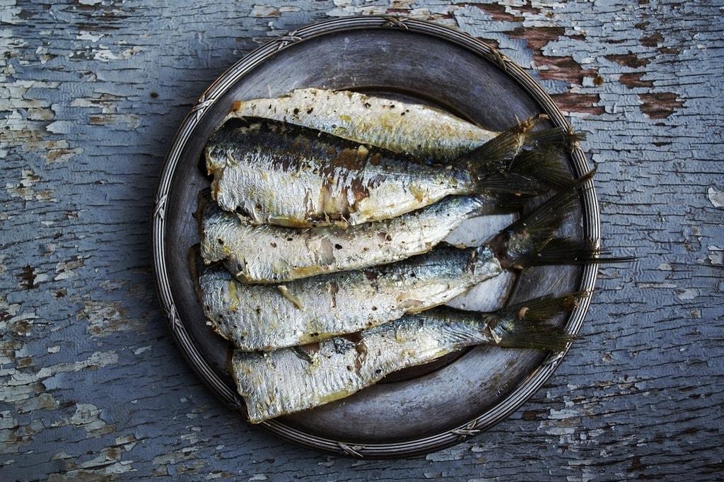 https://pixabay.com/en/sardines-fish-plated-food-food-1489630/