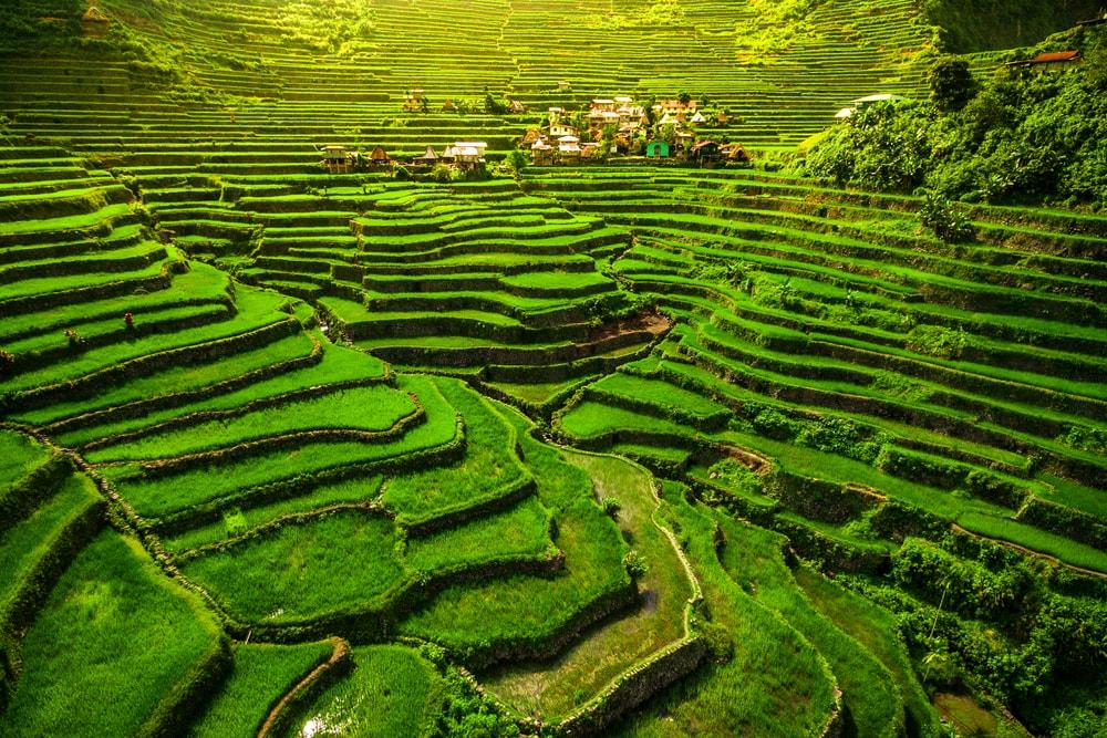 The Breathtaking Ifugao Rice Terraces of The Philippine Cordilleras