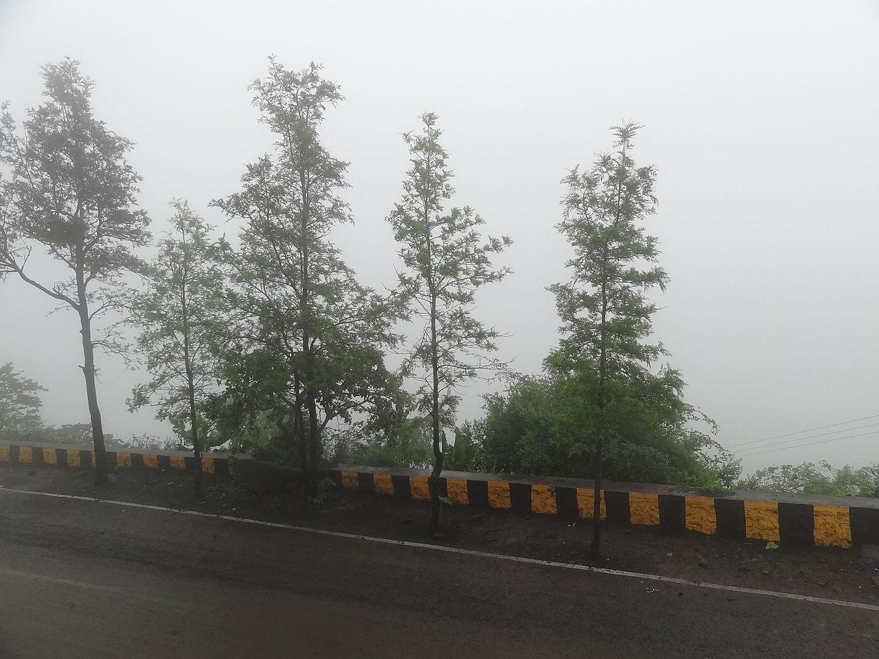 Sinhagad Road Ghat, Pune