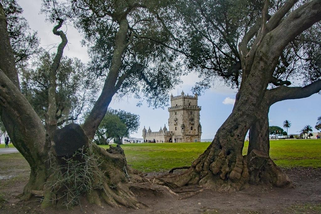 https://pixabay.com/en/tree-nature-landscape-travel-3094037/