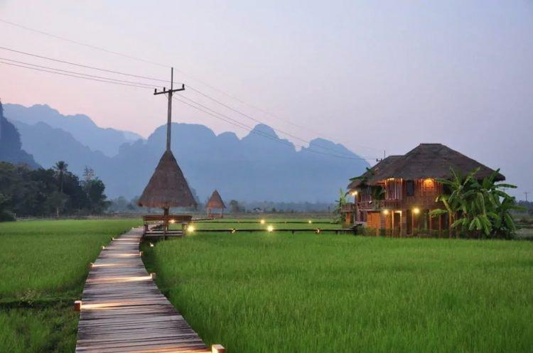 Rice Fields | © Vieng Tara Villa/Hotels.com