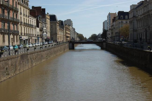 Hibou Grand Duc, Rennes