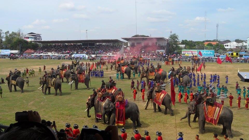Surin Elephant Roundup