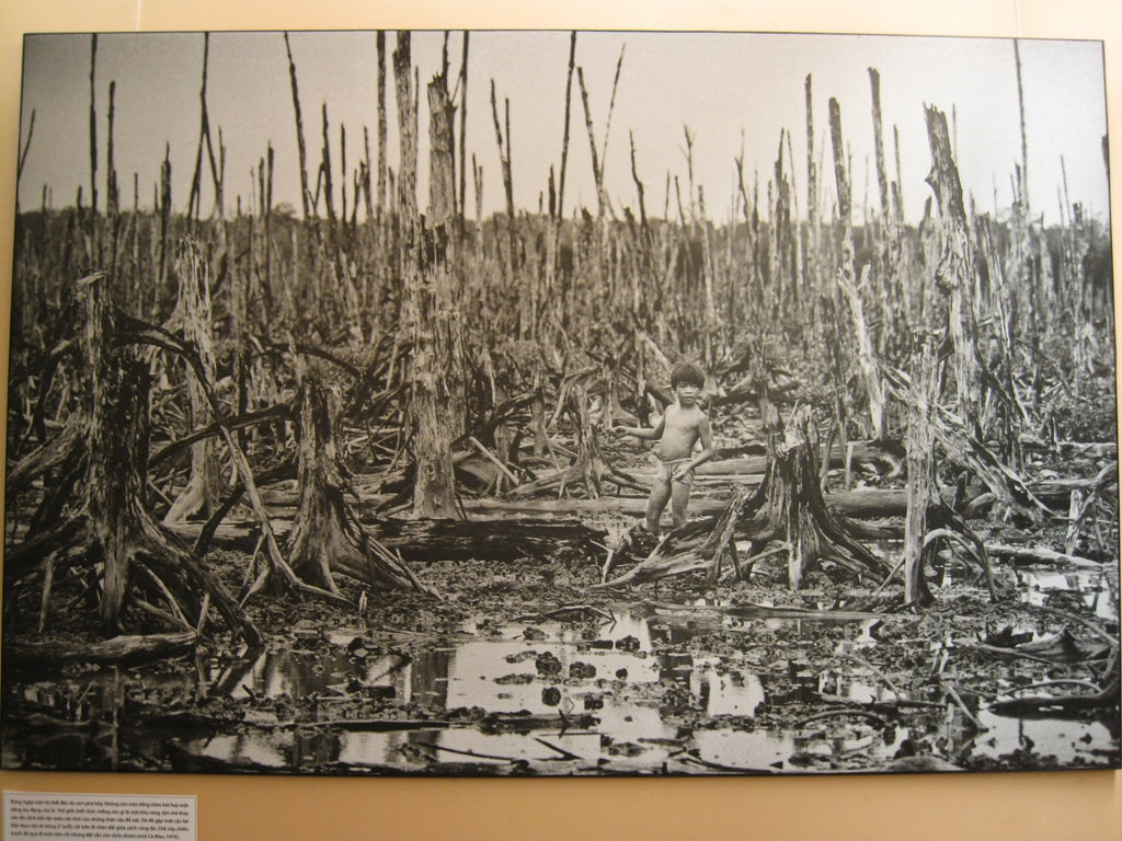 Ho-Chi-Minh-City: War Remnants museum of HCMC, consequences of agent orange