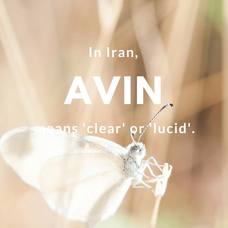 Avin- clear or lucid   © Free-Photos / Pixabay