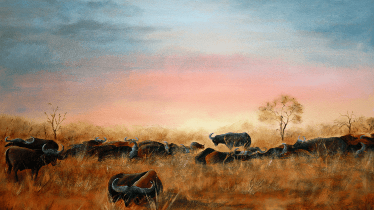 African sunrise by Tina de Beer