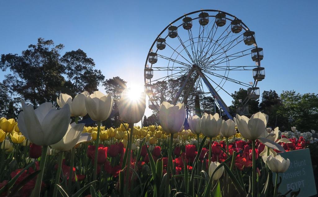 Floriade, Canberra © Robert Montgomery/Flickr