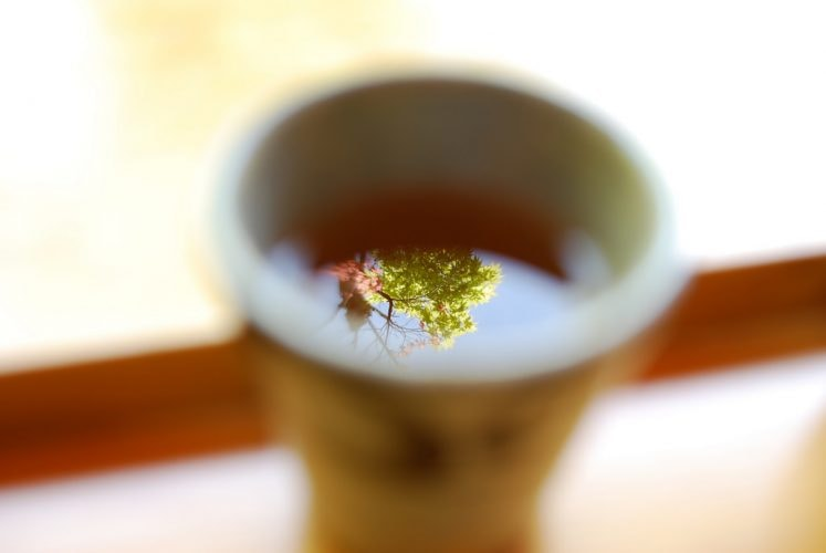 Maple tea © きうこ / Flickr