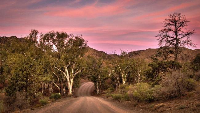 Parachilna Gorge Flinders Ranges | © Jacqui Barker:Wikimedia Commons
