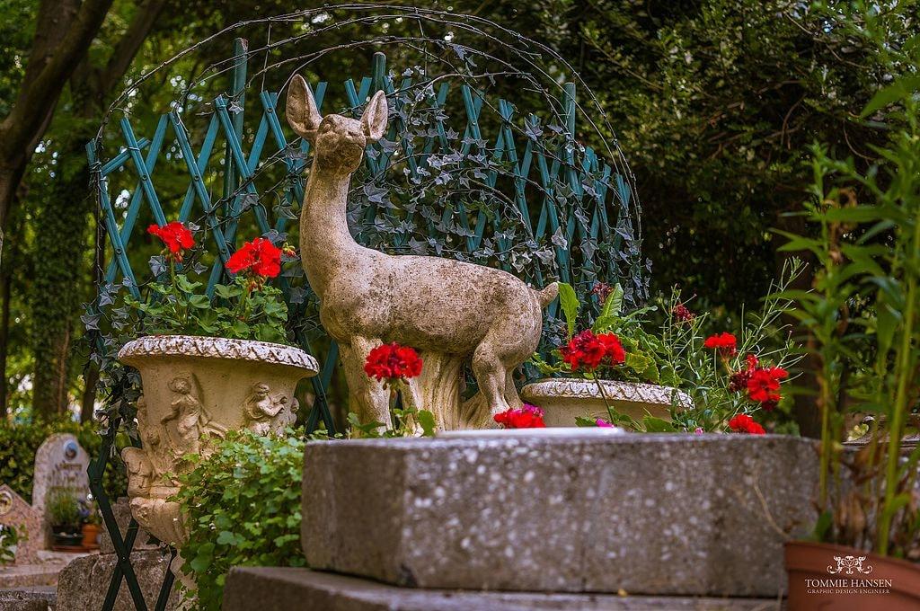 Le Cimetière des Chiens: What to Know about Paris's Unique Pet Cemetery