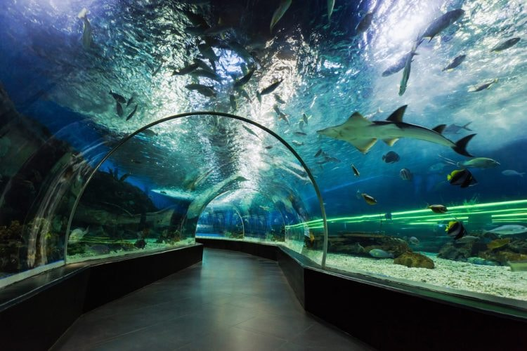 15 Unmissable Attractions In Manila Philippines
