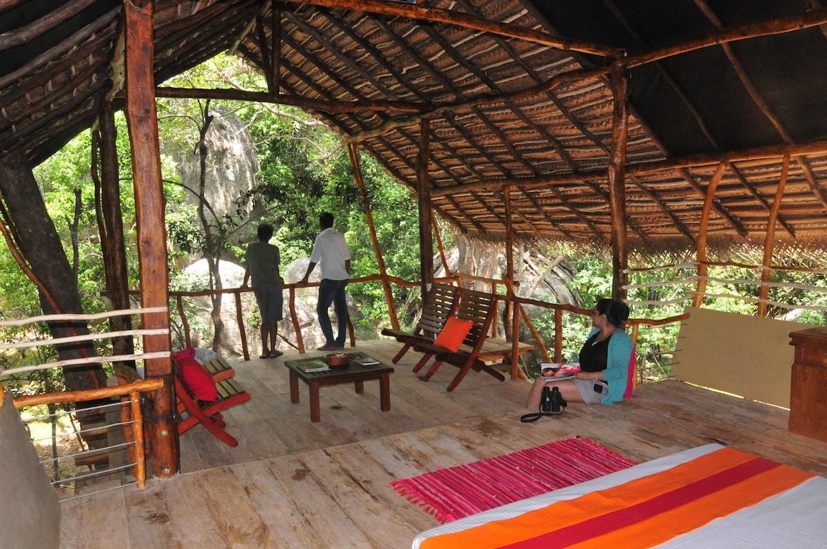 The 6 Best Treehouses In Sri Lanka