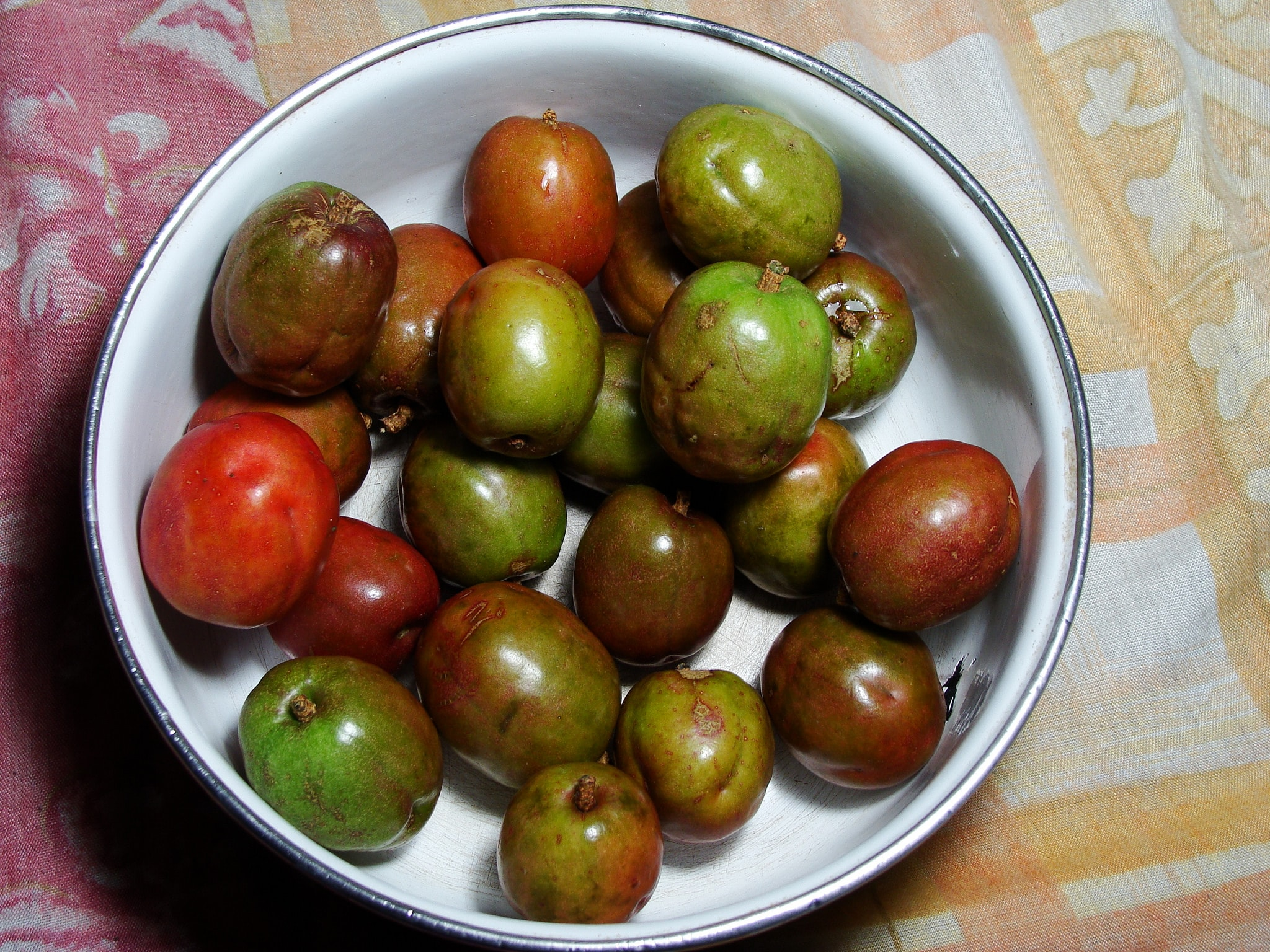 Nicaragua's Exotic Fruits and Where to Find Them