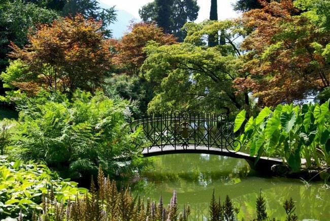 botanic-gardens-como--650x435