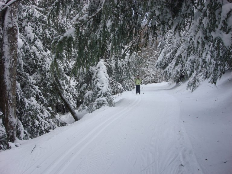 9 Places to Visit in West Virginia's Monongahela National Forest