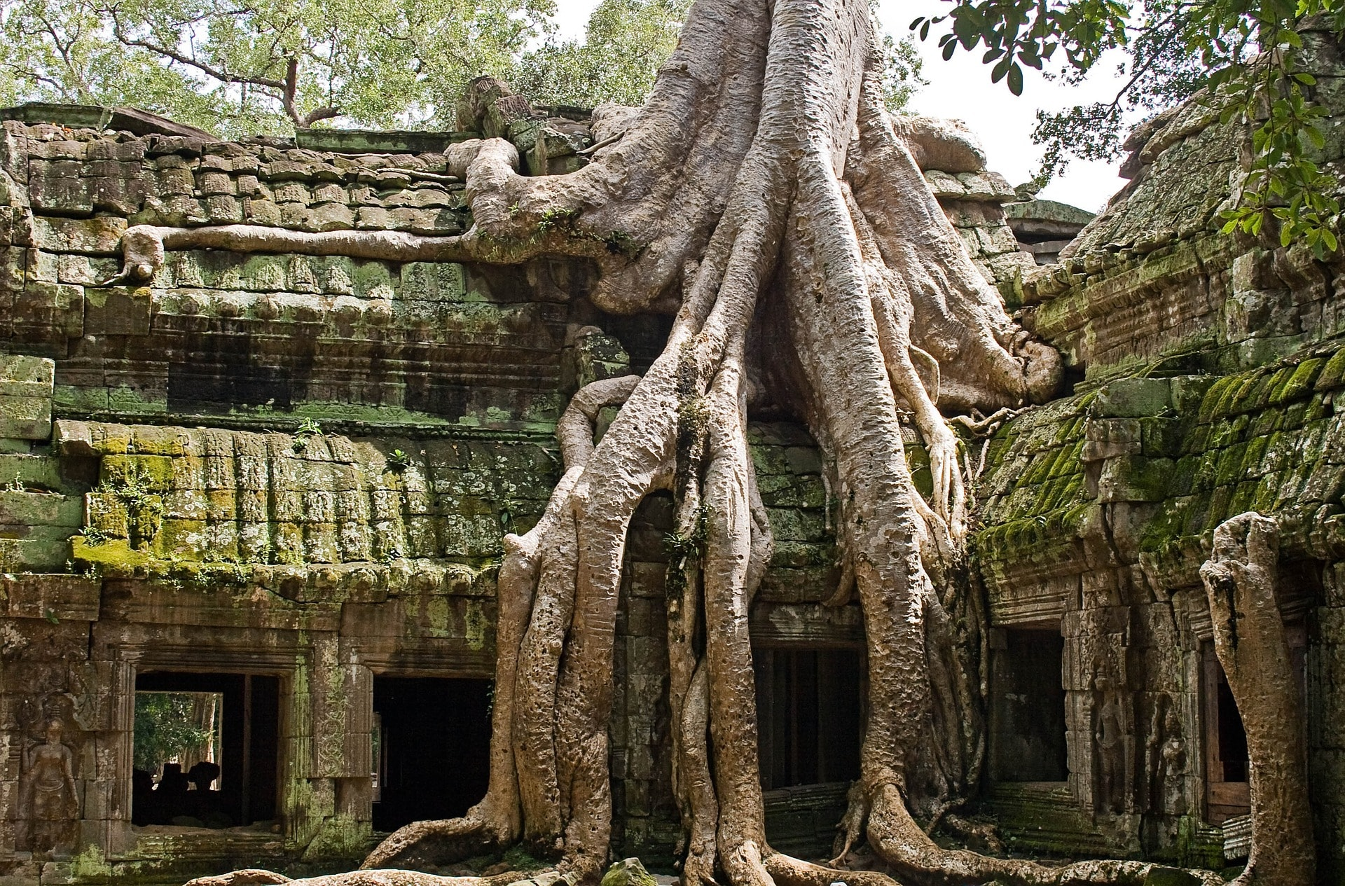 Cambodia Tomb Raider