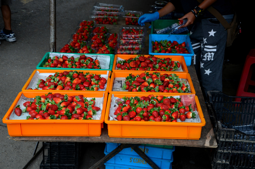 Fresh strawberries at a street market bazaar, Cameron Highlands, Malaysia.