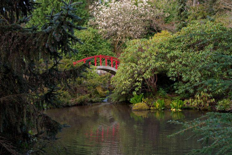 Kubota Garden was started by Japanese emigrant Fujitaro Kubota in 1927