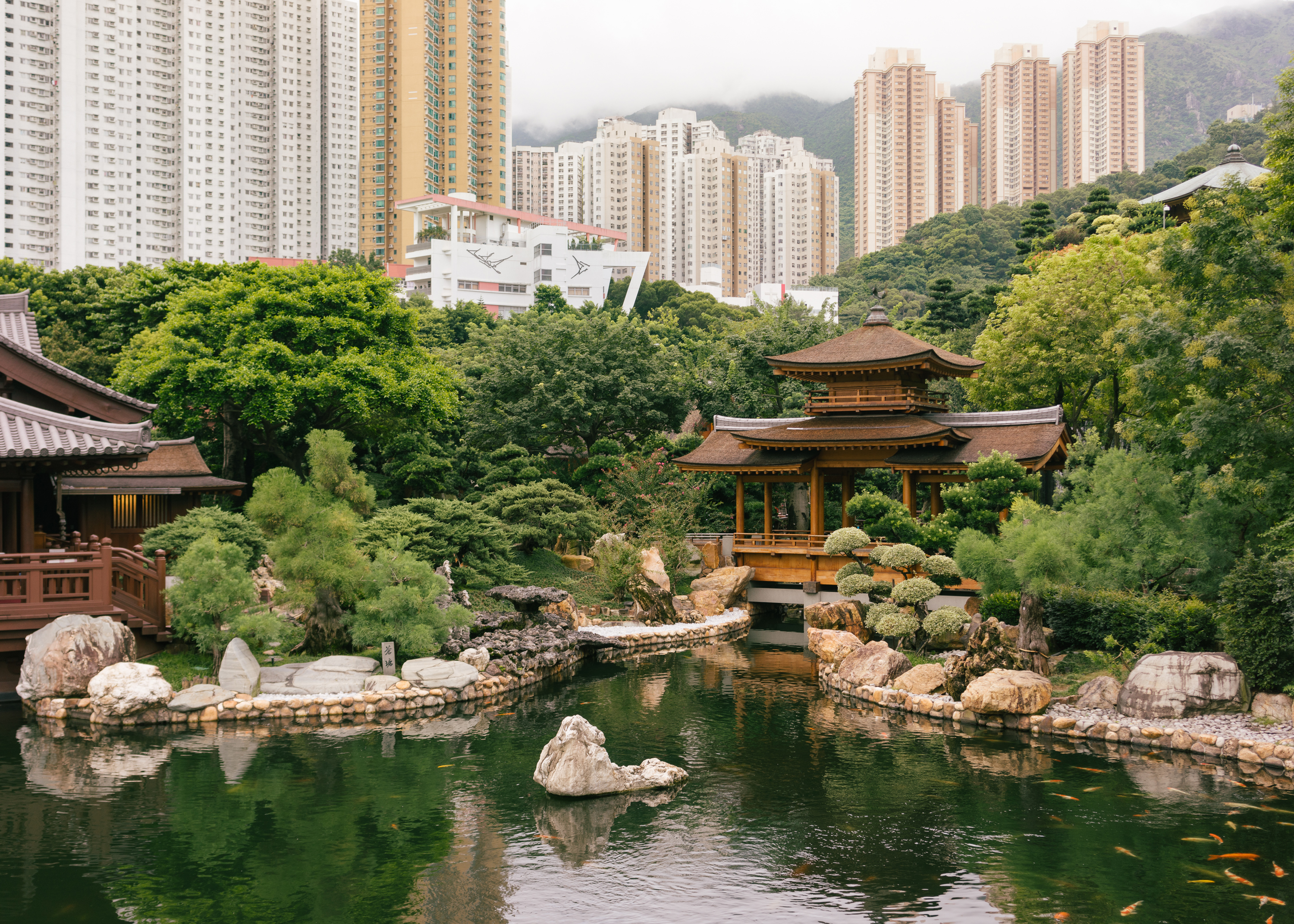 The Best Of Culture In Hong Kong, China-7898