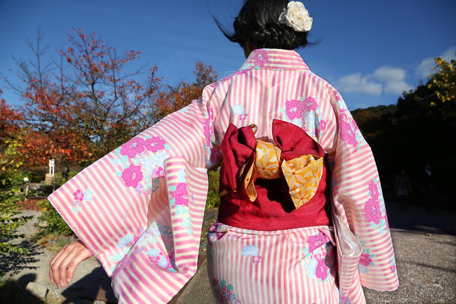 A Japanese woman with traditional kimono woman is walking in Maruyama Park in Kyoto
