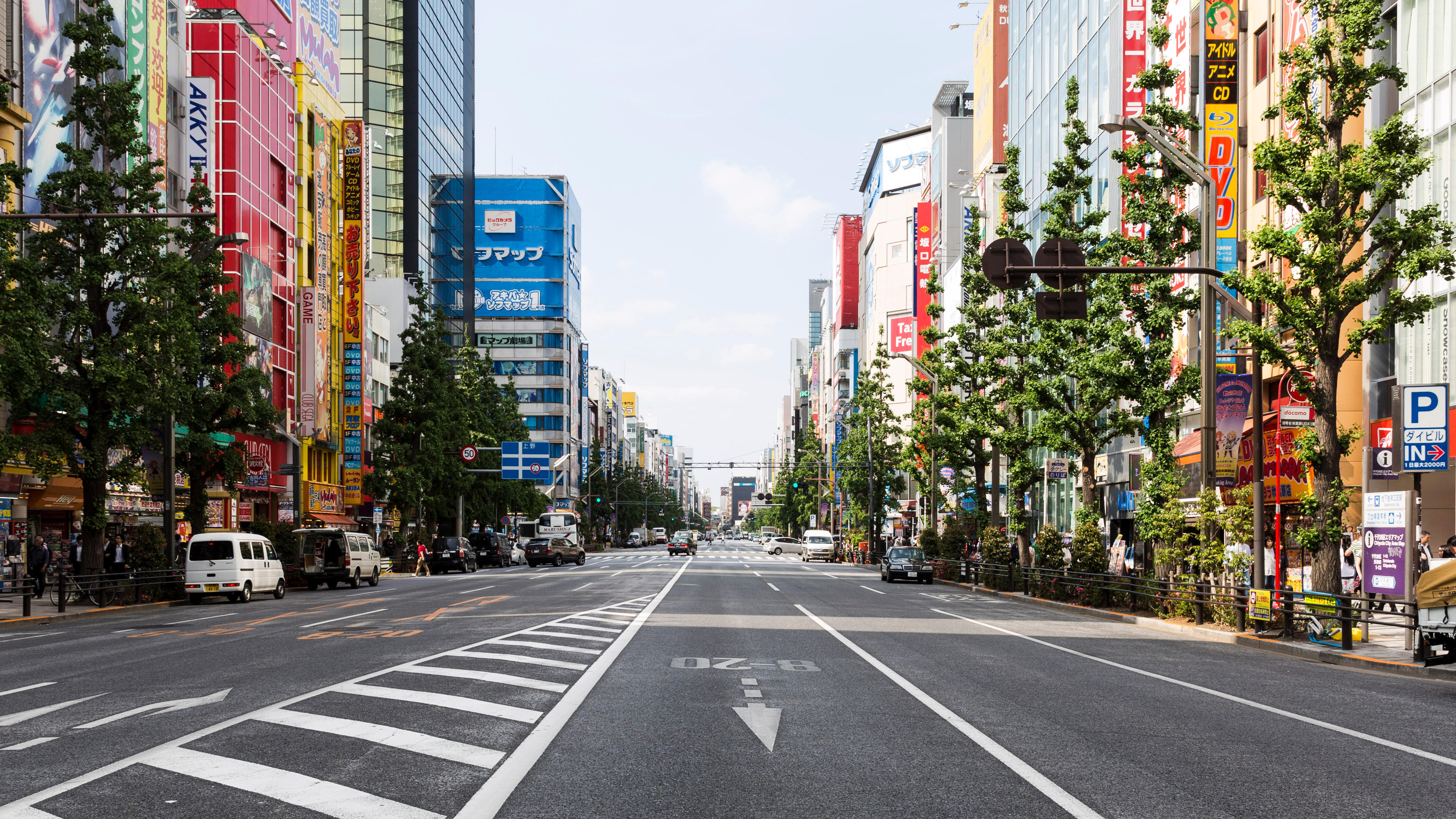 The Best of Culture in Tokyo, Japan