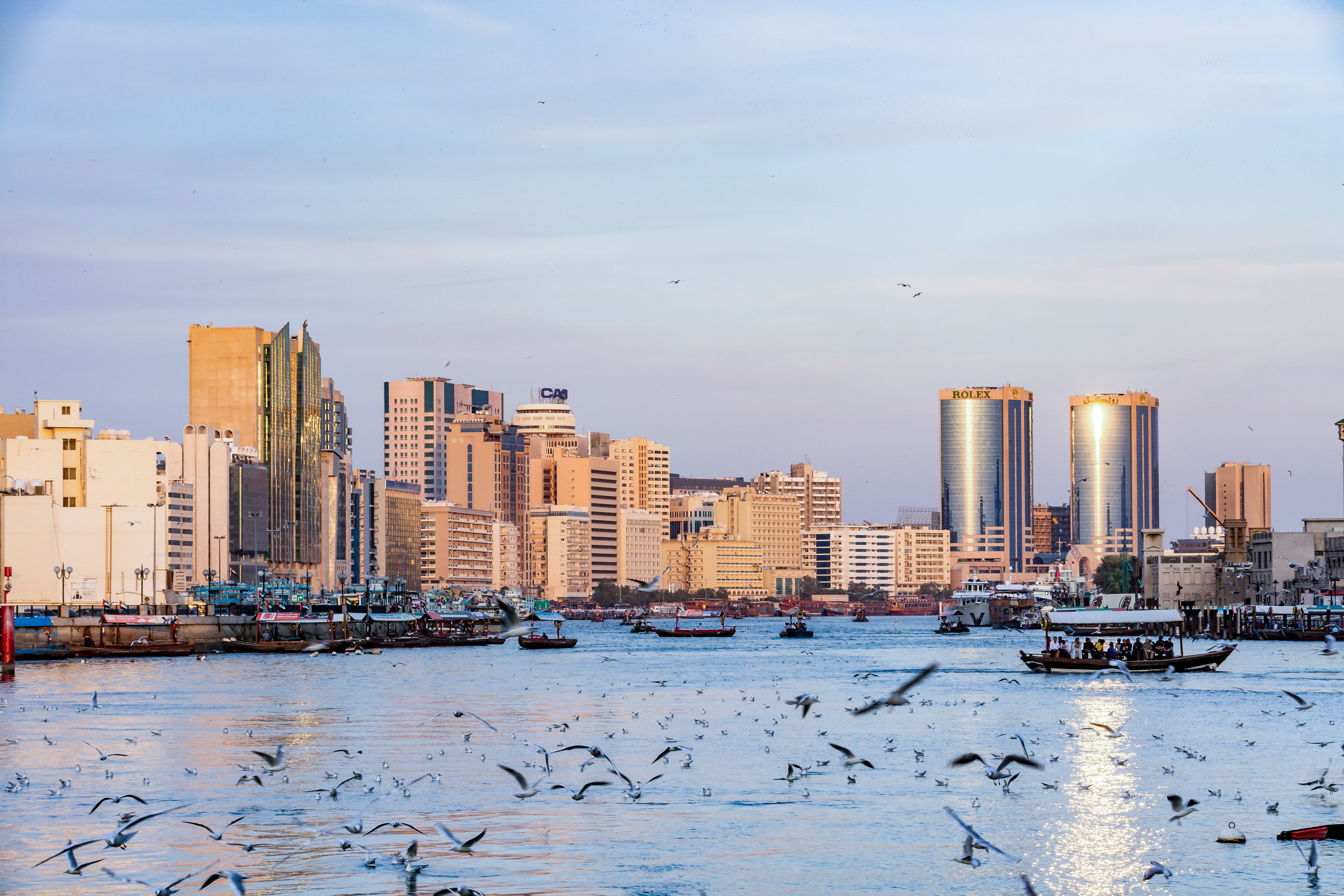 View of Dubai creek with lots of seagulls and abra boats at sunset, United Arab Emirates, UAE