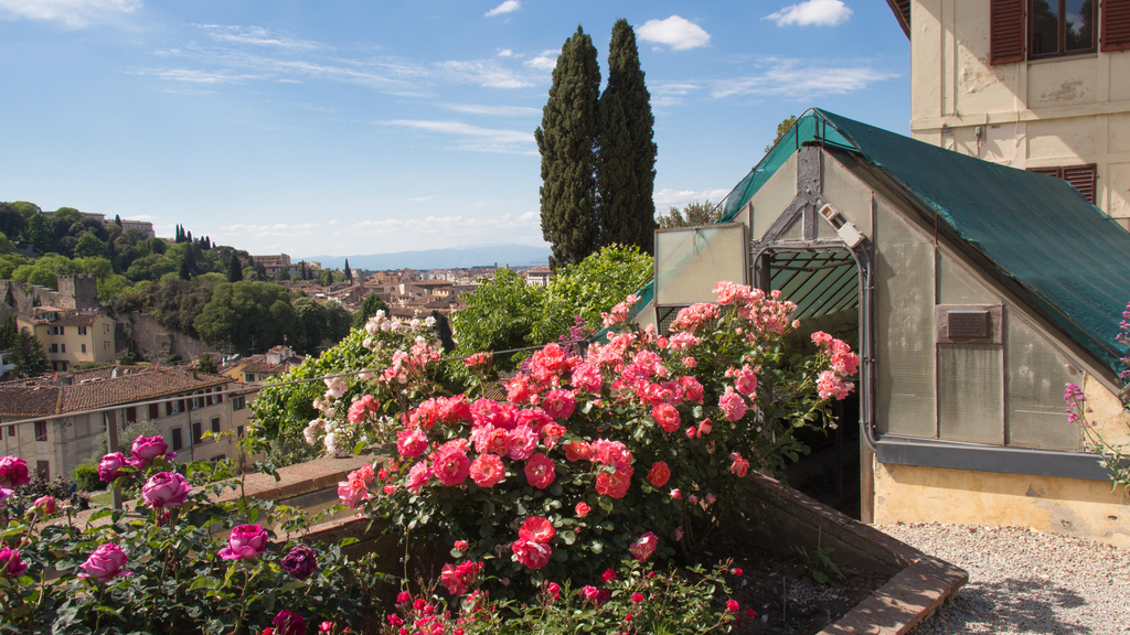 The Most Beautiful Parks and Gardens in Florence