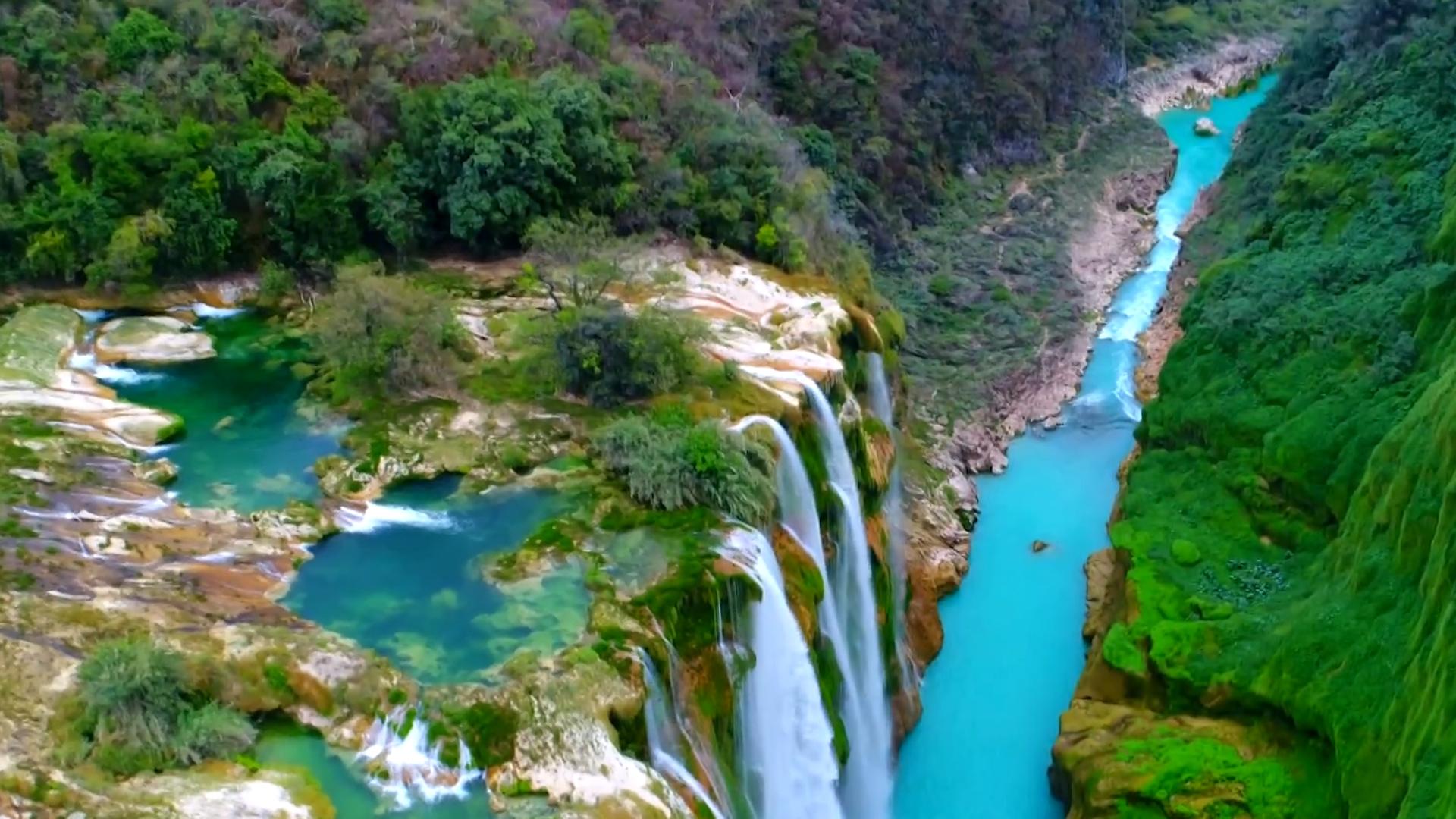 Explore The Oasis Of La Huasteca Potosina Falls In Mexico
