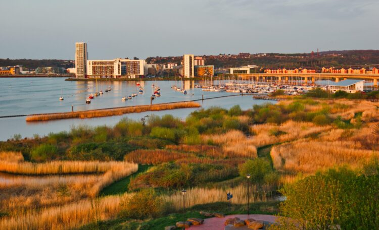 Cardiff Bay Wetlands Reserve, Cardiff Bay, Cardiff, Wales, United Kingdom